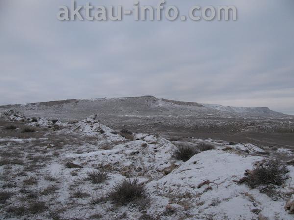 фотографии Тамшалы зимой