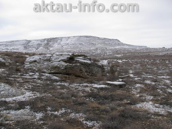 Тамшалы зимой Актау