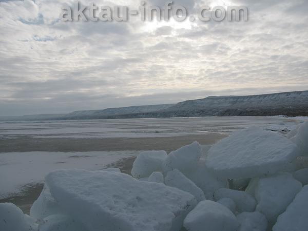 Тамшалы зимой в Актау