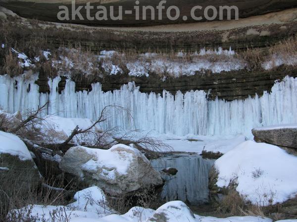 Тамшалы зимой фото
