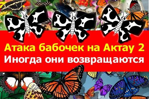 Атака бабочек на Актау
